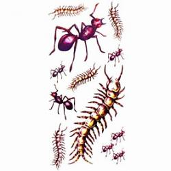 Cheap 1pc Animal Ant Waterproof Tattoo Sample Mold Temporary Tattoos Sticker for Body Art(18.5cm8.5cm)