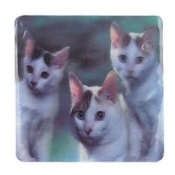 Cheap 3D Life Picture Coaster Cup Mat (1pcs)