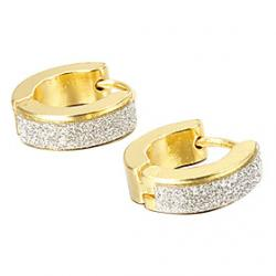 Cheap Gift For Boyfriend Fashion Glitter Gold Titanium Steel Stud Earrings (1 Pair)